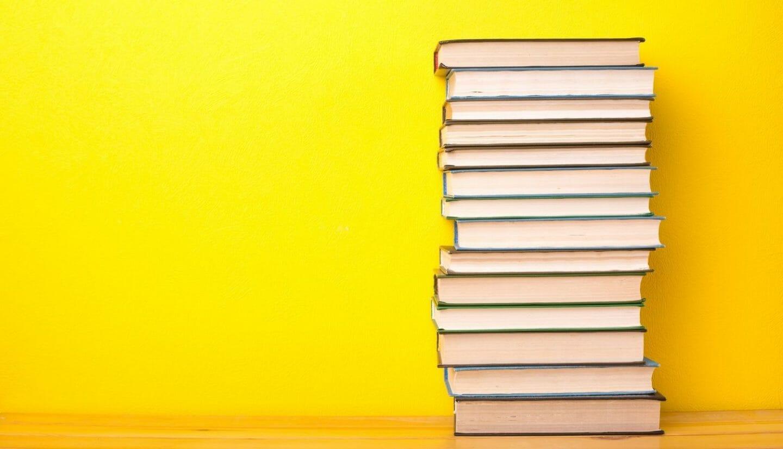 Blog Luna Herbs Wildkräuter_Meine Top 5 Wildpflanzen Bücher für Anfänger
