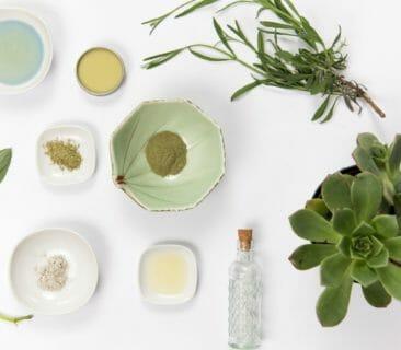 Blog Luna Herbs Wildkräuter_Naturkosmetik selber machen – mit diesen 5 Tipps gelingt es garantiert