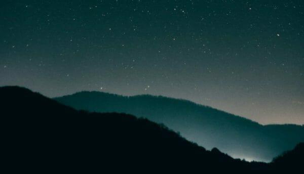 Luna Herbs_Wildkräuter Blog_die fünfte Rauhnacht