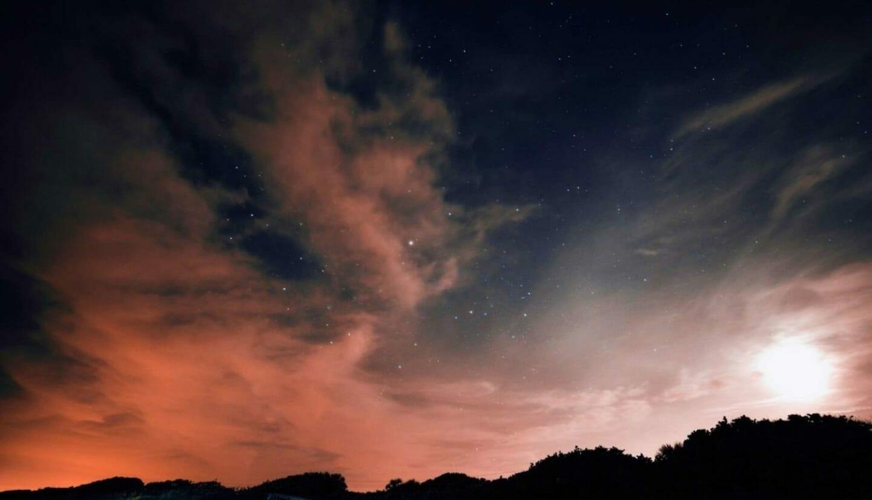 Luna Herbs_Wildkräuter Blog_die neunte Rauhnacht