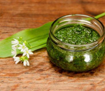 Blog Luna Herbs Wildkräuter_Bärlauch Pesto mit Pilzen und Giersch