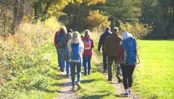 Blog Luna Herbs Wildkräuter_Tipp 3 - Wildkräuter Wanderungen, meine Empfehlungen für dich