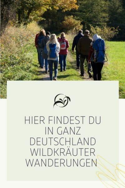 Pinterest_Hier findest du in ganz Deutschland Wildkräuter Wanderungen