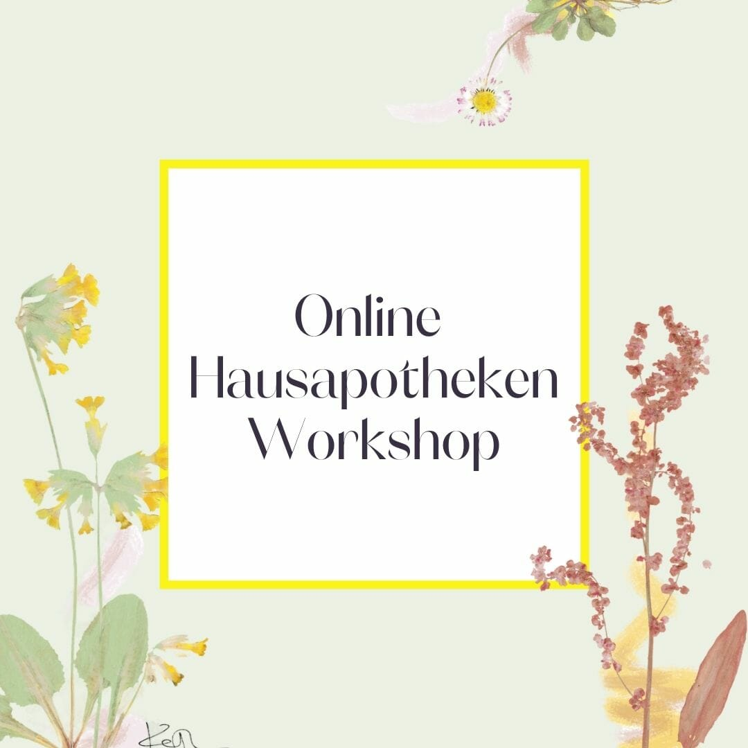 Luna Herbs Wildkräuter Blog_Online Hausapotheken Workshop