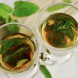 herbal tea, tea, herbs