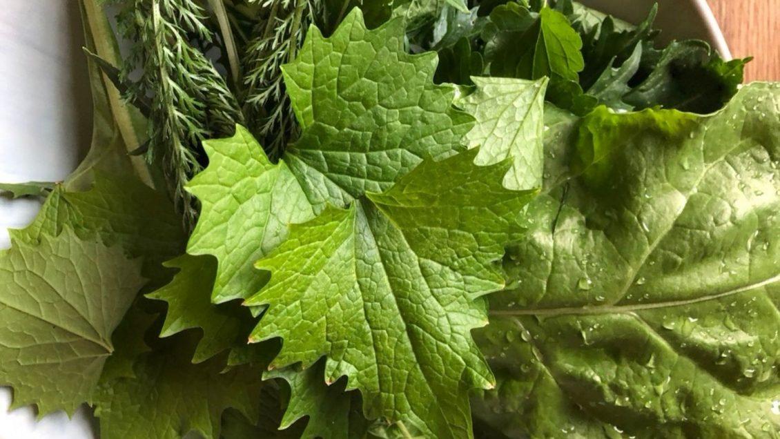 Luna Herbs_Wildkräuter Blog_So machst du grüne Smoothies mit Wildkräutern auch im Winter92